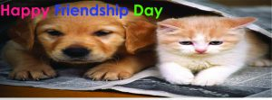 facebook covers Friendship day